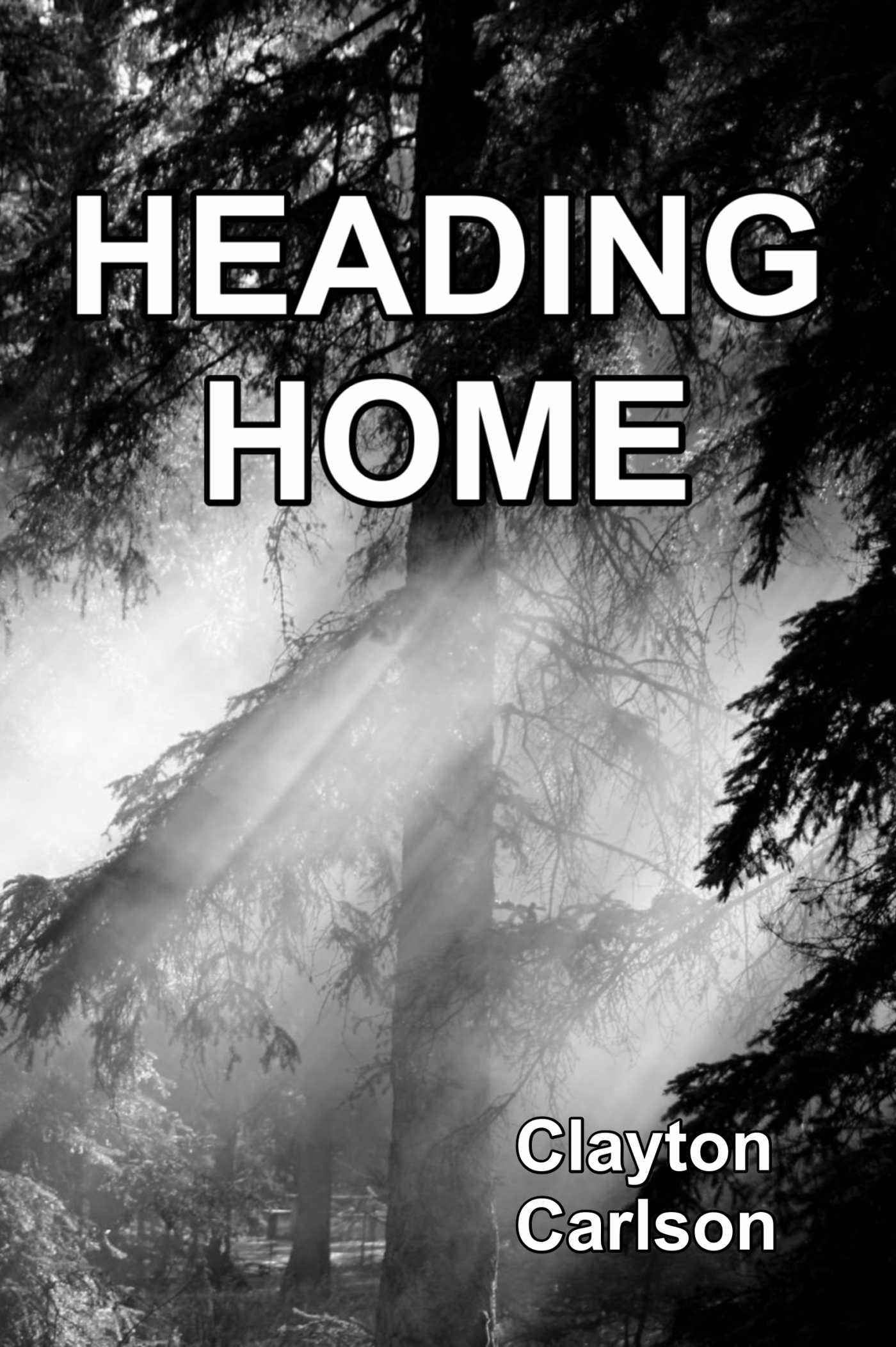 Heading Home, author Clayton Carlson, cover photography by Lawrence Kessler.cover.